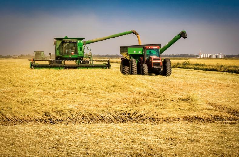 ДЗС: Зголемен откупот и продажбата на земјоделски производи во првиот квартал од 2018