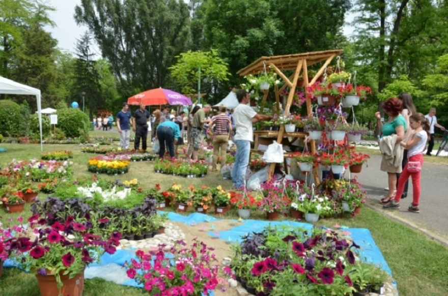 Утре и задутре, настан за сите љубители на цвеќето и природата – Скопски цветен фестивал во Градски парк