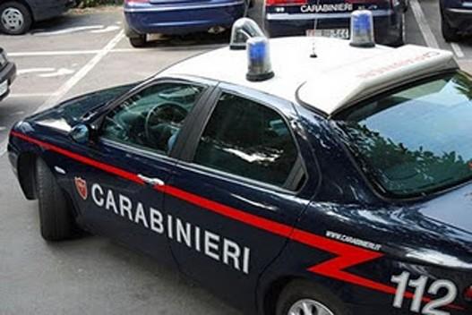 Полицијата во Италија заплени 352 килограми марихуана од Албанија