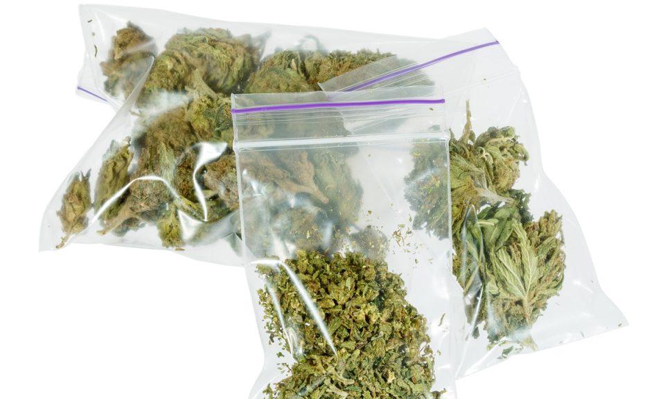 """Во приколка во автокампот """"Градиште"""" пронајдена марихуана"""