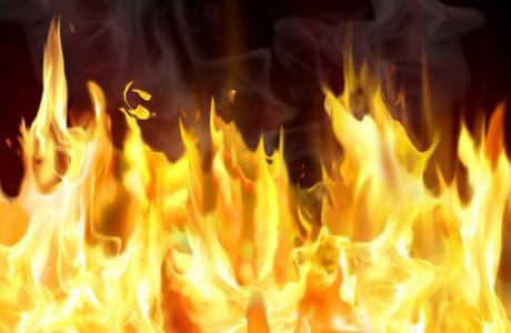 Гнездо со пет мали штркчиња изгоре во пожар во Кавадарци