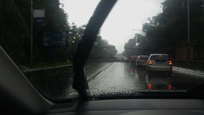 Паднато дрво го блокираше сообраќајот на Илинденска