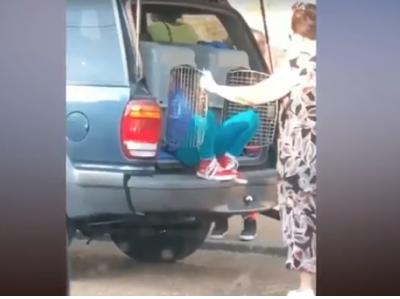 Морбидно – Баба ја чува внуката во кафез за кучиња во багажник (ВИДЕО)