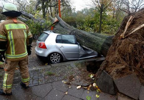 Во Австрија е прогласена вонредна состојба – откорнати се дрва и кровови од куќи на секаде (ВИДЕО)