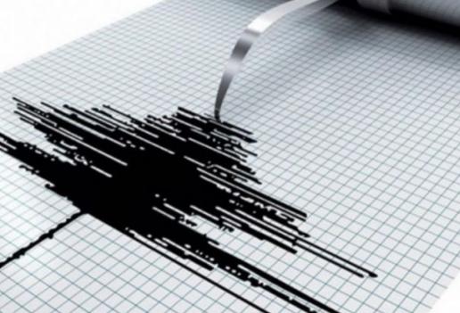 Силен земјотрес ја погоди Јапонија