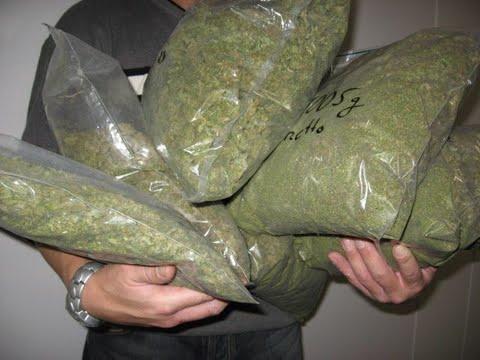 Во стан на велешанец пронајдена голема количина на дрога