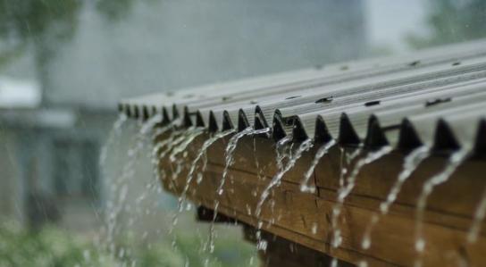 Попладнево пороен дожд и грмежи