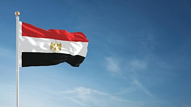 Египетските сили убија 12 исламисти