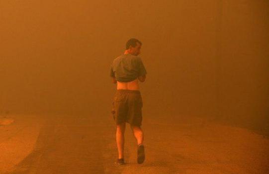 На грчкиот остров Евија прогласена вонредна состојба, огнот се шири (ВИДЕО)