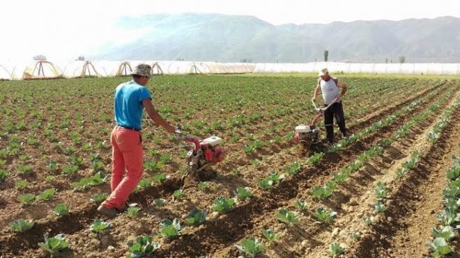 Државата ќе им ги враќа парите на земјоделците што ги дале за камати