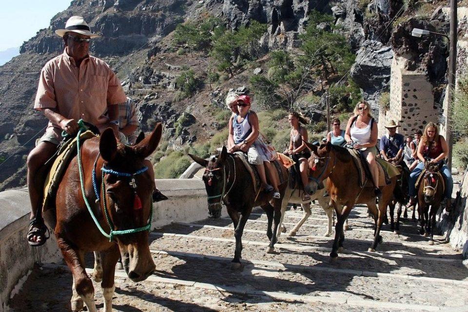 Грција: Туристите со прекумерна телесна тежина не смеат да јаваат магариња на Санторини