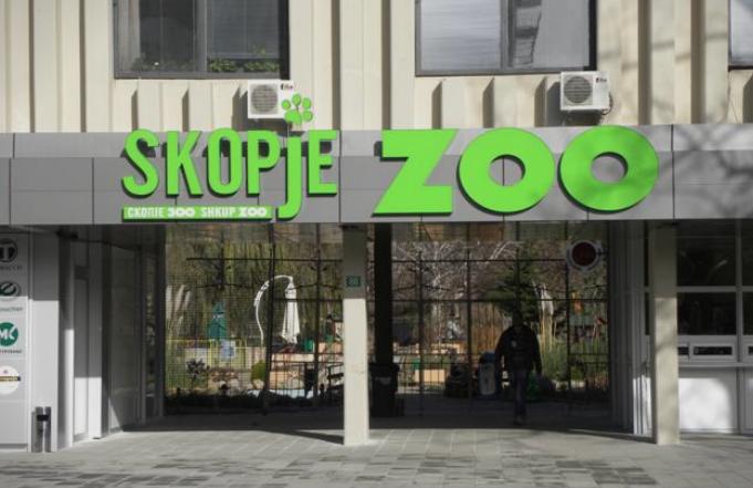 ФОТО: Мајмунче се роди во Зоолошката градина во Скопје
