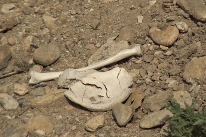 Гробови од третиот и четвртиот век пронајдени на патот Градско-Прилеп