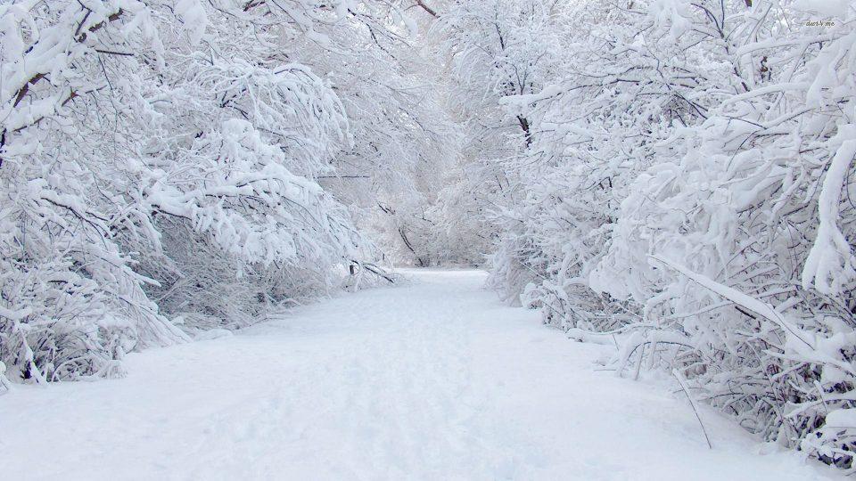 Од утре снег во Македонија