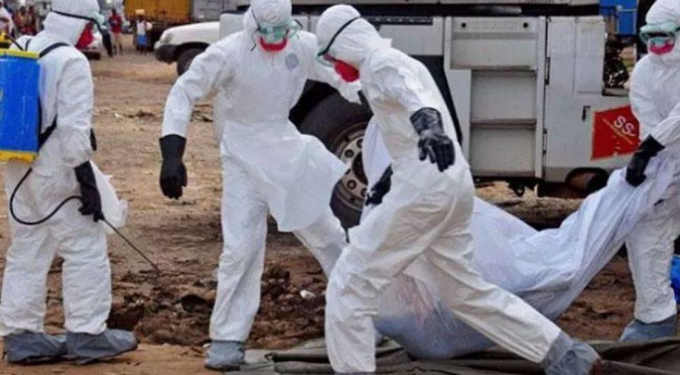 Изворот на смртоносниот вирус во Кина не е познат
