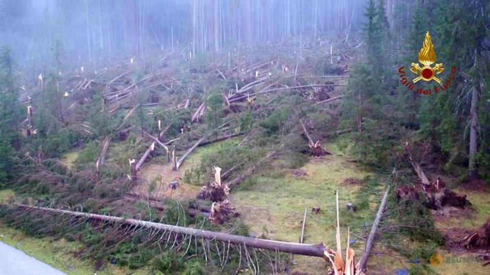 Невремето во Италија одзеде 17 човечки животи и уништи 14 милиони дрвја