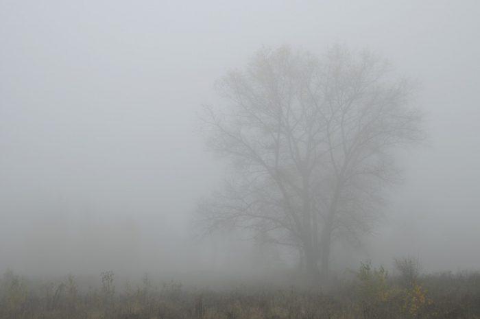 Претпладне по котлините магливо, од вечер дожд