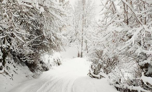 Снег повторно ја зафати Македонија – еве каде има највисока снежна покривка