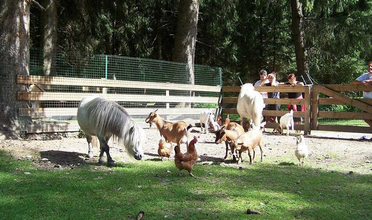 Во Зоолошка градина ќе се отвора Бејби Зоо