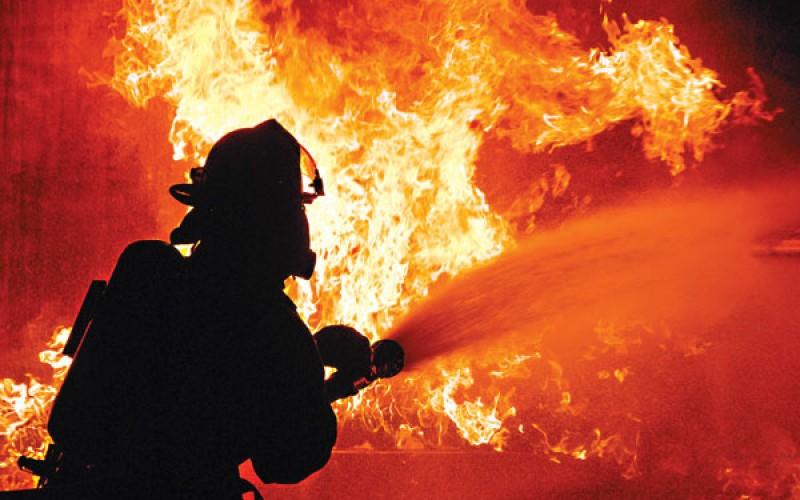 Пожар во Скопје: Зафатена е борова шума