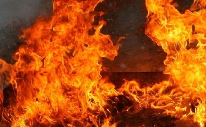 Голем пожар во беровско – граѓаните го гаснат пожарот