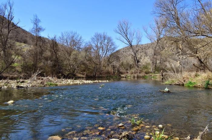Водостоите на реките под просекот за јануари