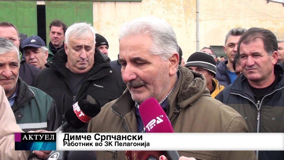 """Штрајк во земјоделскиот комбинат """"Пелагонија"""" во Битола"""