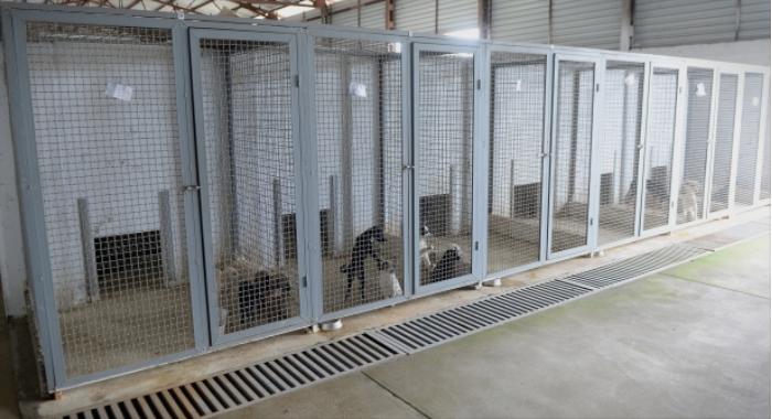 """Извор на заразни болести: Агенцијата за храна и ветеринарство го затвори """"Вардариште"""""""