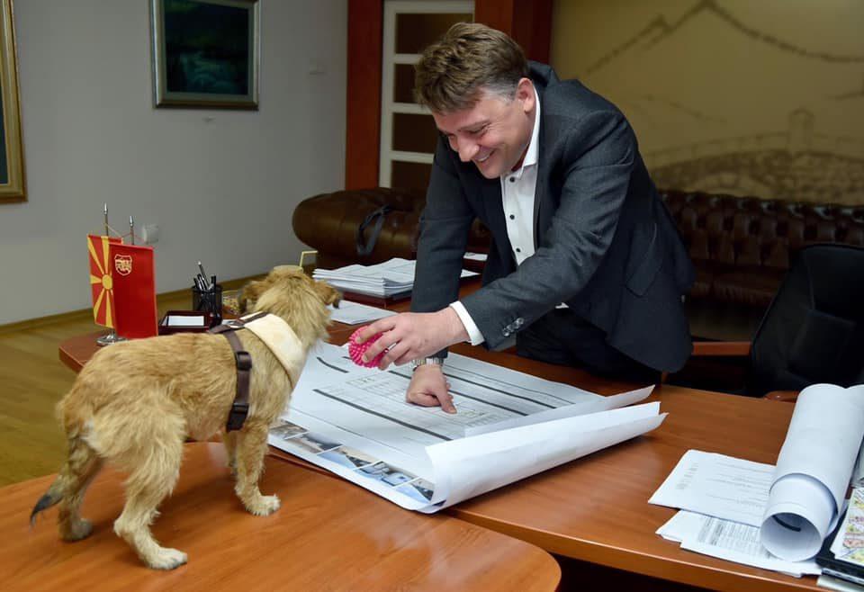 (ФОТО) Шилегов повторно хит на социјалните мрежи – нуди куче за вдомување