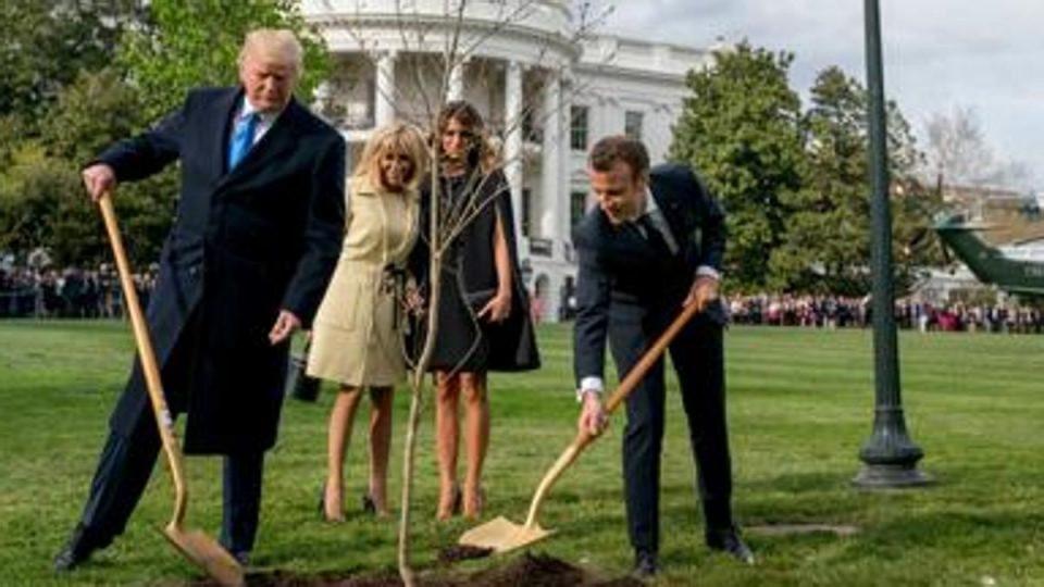 Макрон: Дабот што му го подарив на Трамп се исуши