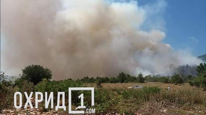 (ВИДЕО) Пожарот слегува кон селото – состојбата во Дебрца алармантна