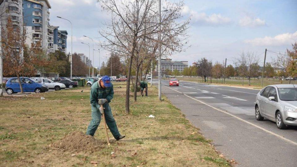 Жителите на Аеродром да даваат предлози каде да се садат нови дрва, повикува општината