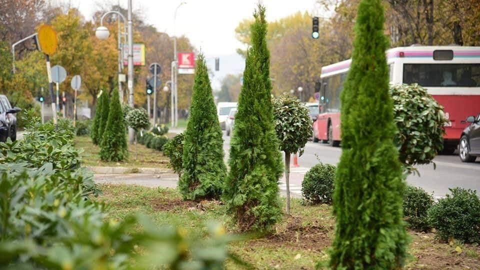 Есенска акција за разеленување на Скопје