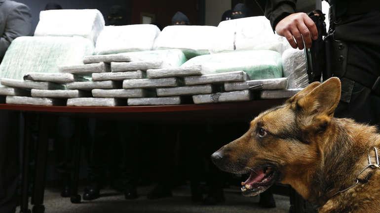 Полициско куче откри рекордна количина хероин во Словенија