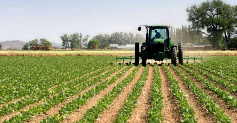Заев: Комитетот за земјоделство се фокусира на системски мерки за продуктивно земјоделско производство