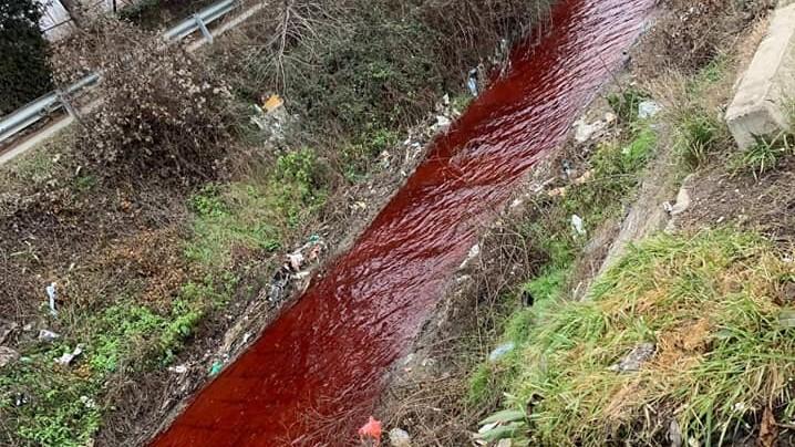 (ФОТО) Пријавено загадување: Реката Серава доби црвена боја