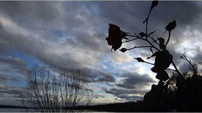 Променливо облачно со сончеви периоди, попладне со услови за пороен дожд
