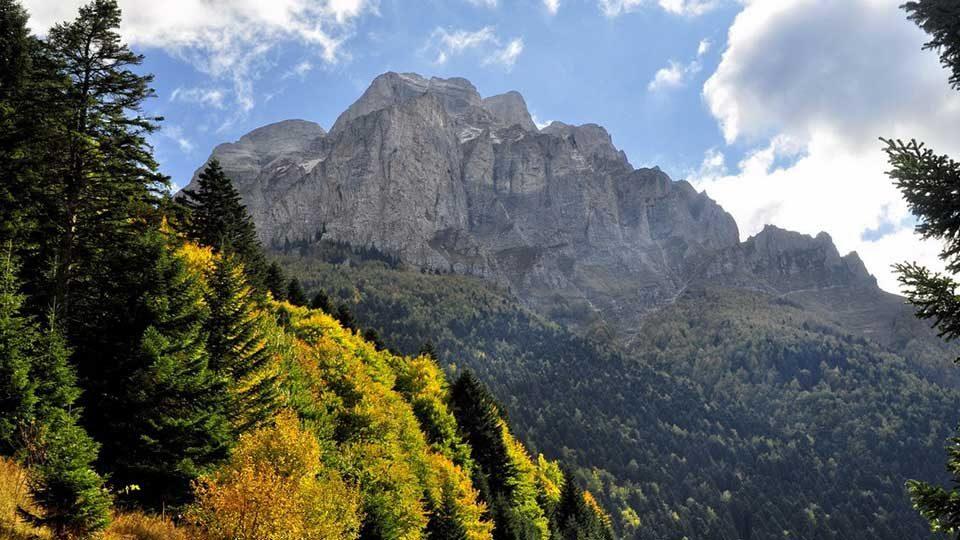 Меѓународен ден на животната средина: Надеж дека кризата ќе внесе нов фокус свртен кон природата
