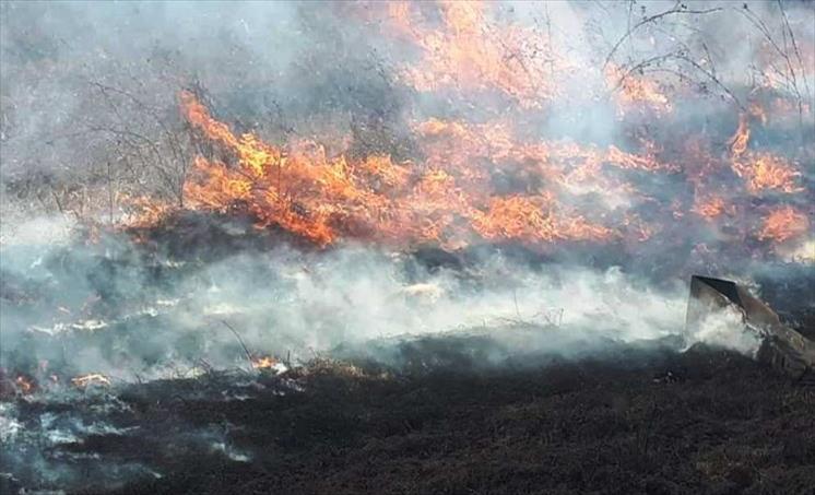 Пожар меѓу селата Рибарци и Паликура