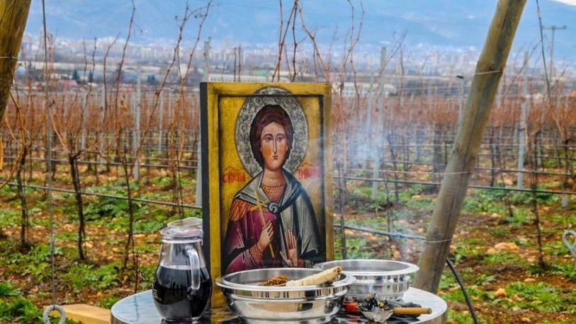Денеска е Свети маченик Трифун: Заштитник на градинарите и лозарите