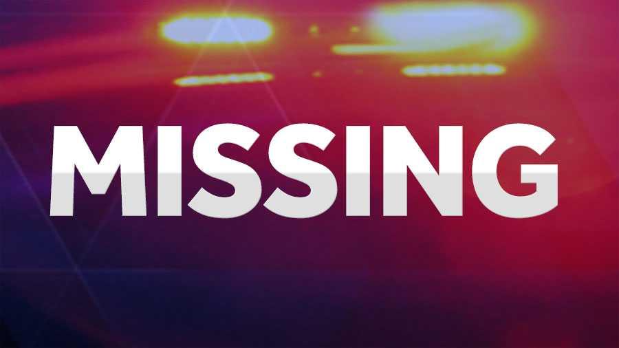 Четиринаесетгодишно дете  исчезнало од Кавадарци