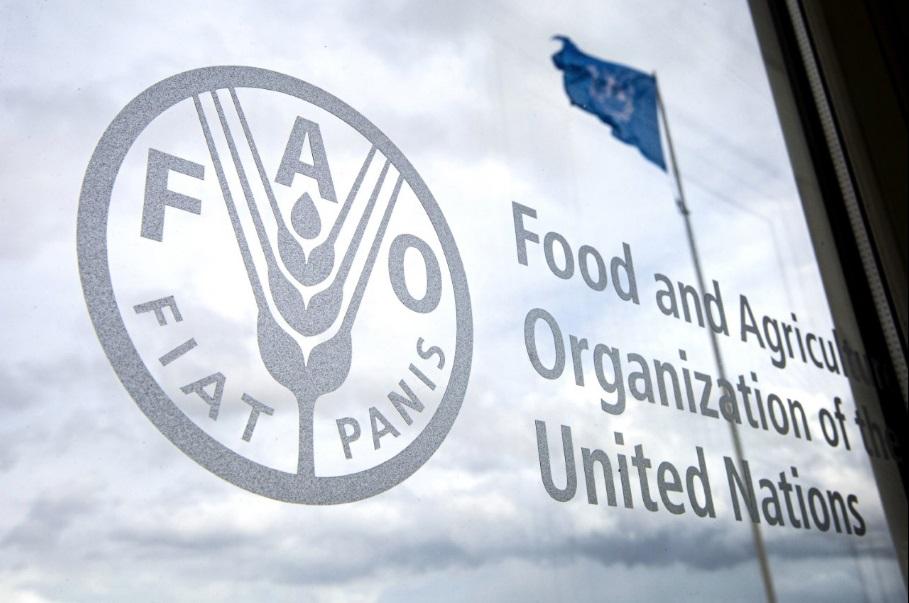 Милиони луѓе би можеле да умрат од глад, тврди шефот на ООН