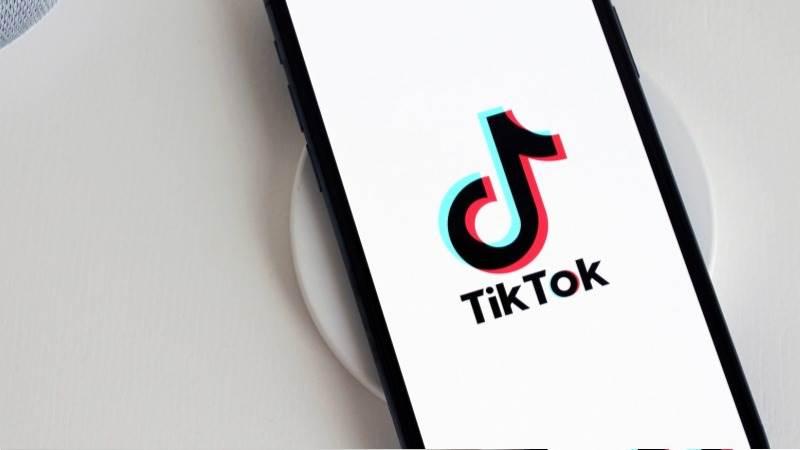 """Постојат дојави за повици на масовно самоповредување на малолетници на мрежата """"ТикТок"""""""