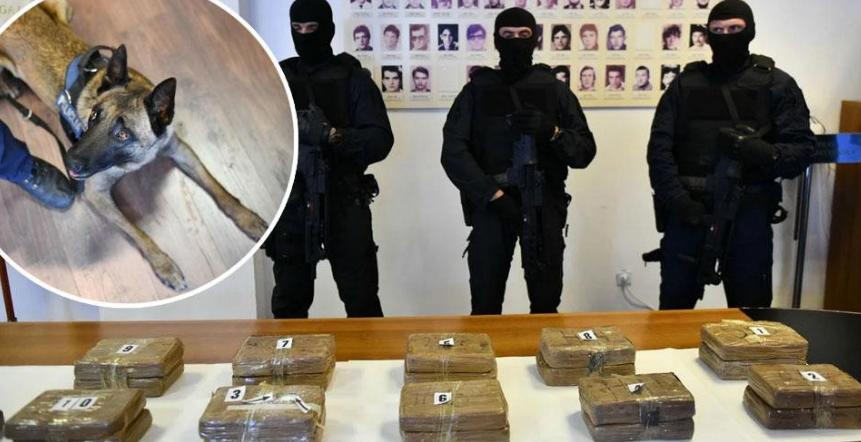 Хрватската полиција и царина запленија 25 килограми кокаин