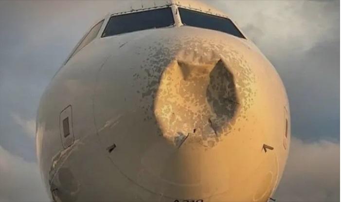 (ВИДЕО) Aвион принудно слетал во Њујорк со голема вдлабнатина