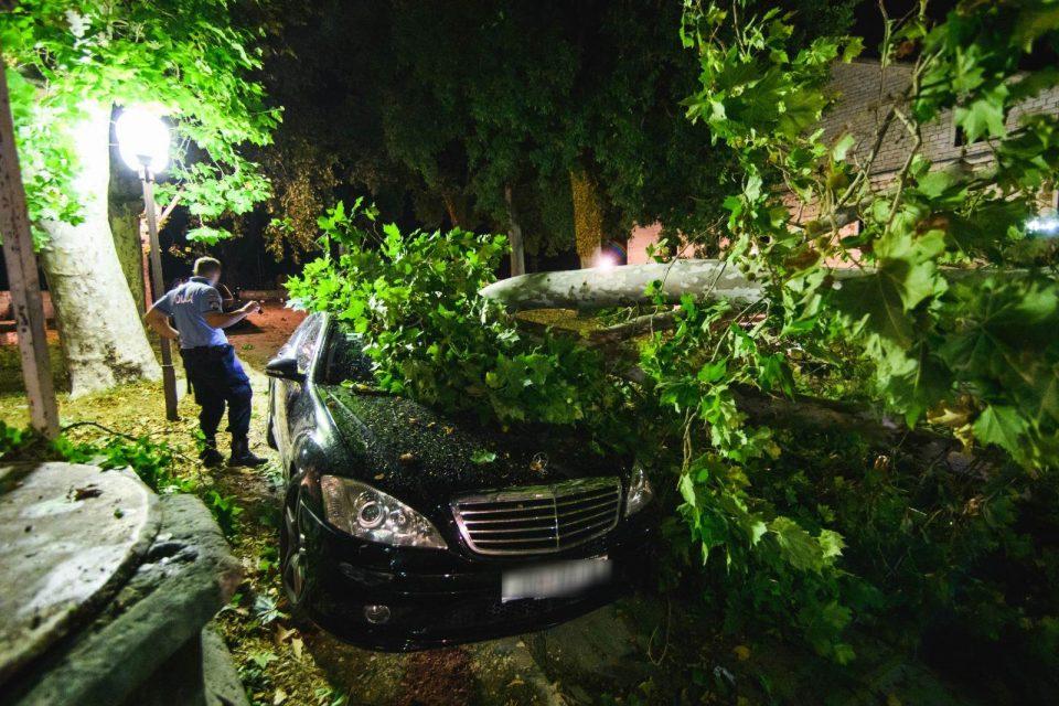 (ВИДЕО) Силен ветер корнеше покриви и стебла во Хрватска: Едно лице повредено