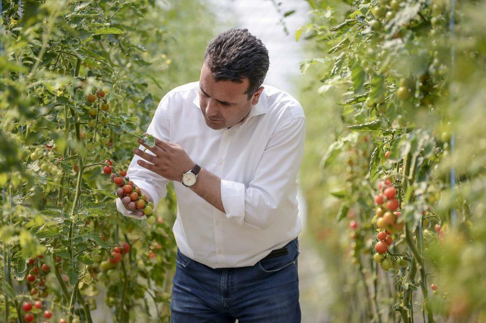 Заев од Водоча: Да купуваме домашни производи и да ги помагаме вредните производители