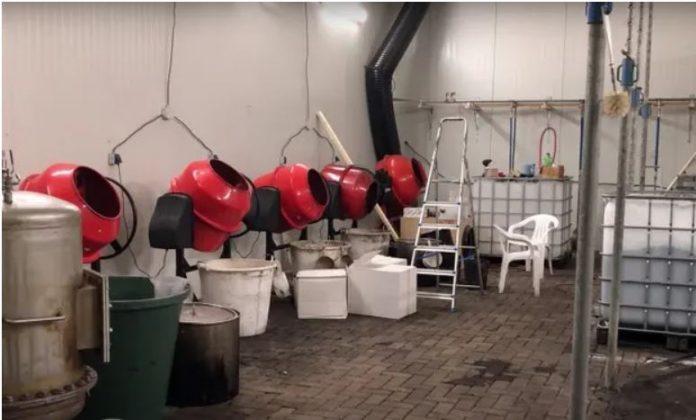 Во училиште за јавање на коњи откриена најголема холандска лабораторија за кокаин