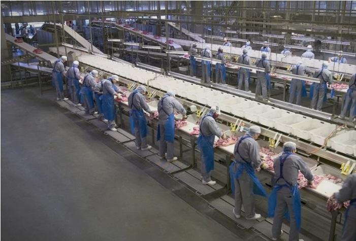 Коронавирус е утврден кај 62 вработени во компанија за преработка на месо