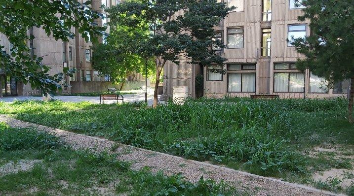 (ФОТО) Исчезна биста на Гоце Делчев во Скопје